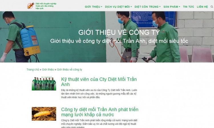 Công ty diệt côn trùng Trần Anh
