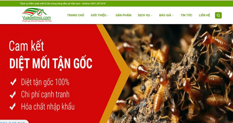 Công ty diệt muỗi tại TPHCM Đại Việt