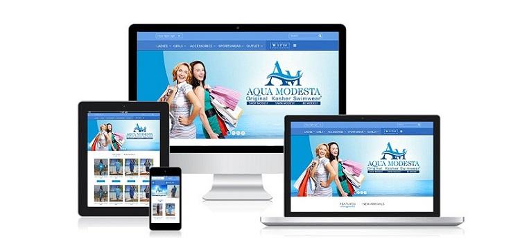 Công Ty thiết kế web IMS