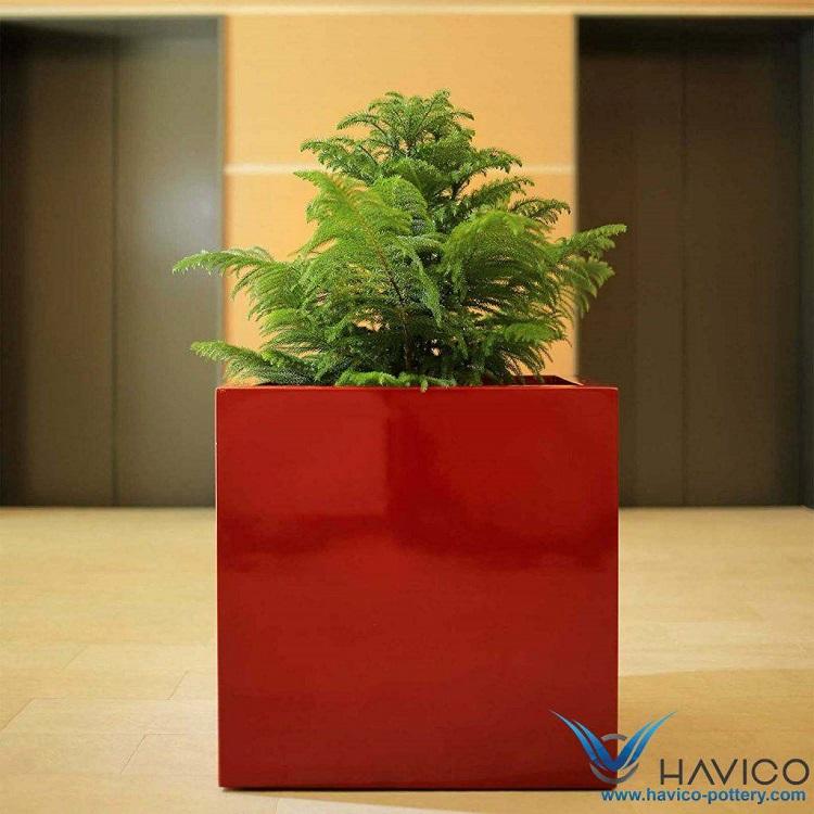 Công ty Havico – địa chỉ bán chậu cây cảnh TPHCM